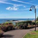 Gardens Overlook 2 - Lyme Regis by Susie Peek