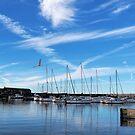 Lyme Regis Harbour - July Morning by Susie Peek