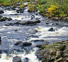 Panorama of the Falls Of Dochart by Stephen Frost