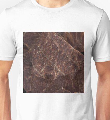 Beef Jerky Unisex T-Shirt