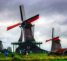 Windmills at Zaanse Schans by Tom Gomez