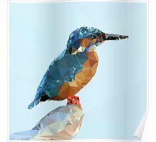 Triangular Kingfisher Poster