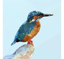 Triangular Kingfisher Photographic Print