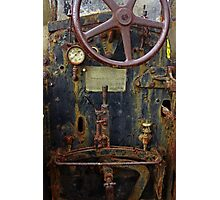 Old Baffalo In Rust Photographic Print