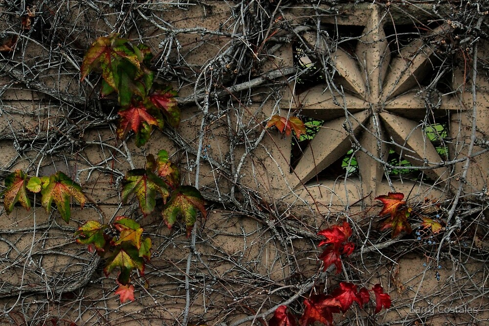 Cemetery Wall- Study Of Textures by Larry Costales