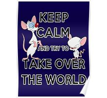 Keep Calm and Try to Take Over the World Poster