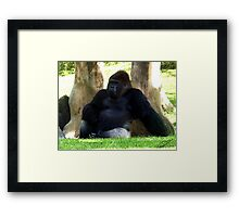 The King of the Apes Framed Print