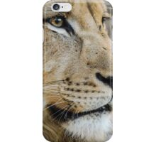 A young King of the Jungle iPhone Case/Skin