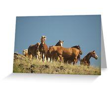 Herd on the Hillside Greeting Card