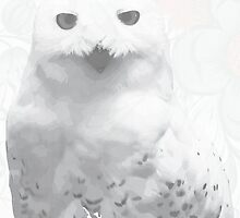 Hoot by HalamoDesigns