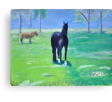 Horses in the Morning Mist Canvas Print