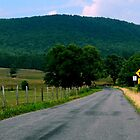 Country Road on a Summer Day by ctheworld