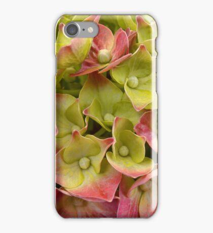 French Hydrangea iPhone Case/Skin
