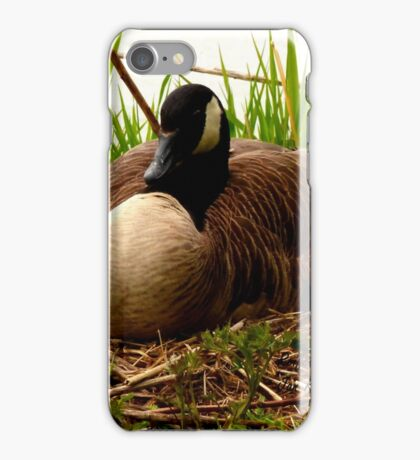 Nesting Canada Goose iPhone Case/Skin