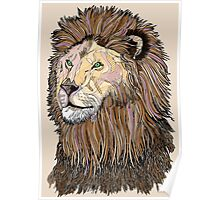 Abstract coloured lion line drawing Poster