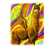 The Flying Llama Dude Photographic Print