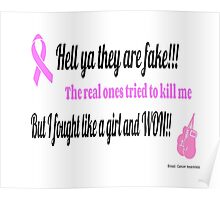 Breast Cancer Fighter Poster