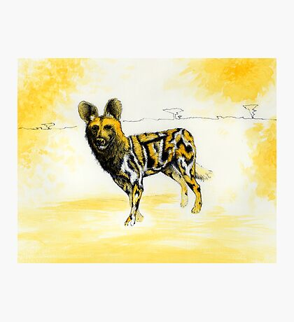 African Wild Dog Notes Photographic Print