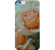 Apricot Nectar Rose From My Garden iPhone Case/Skin