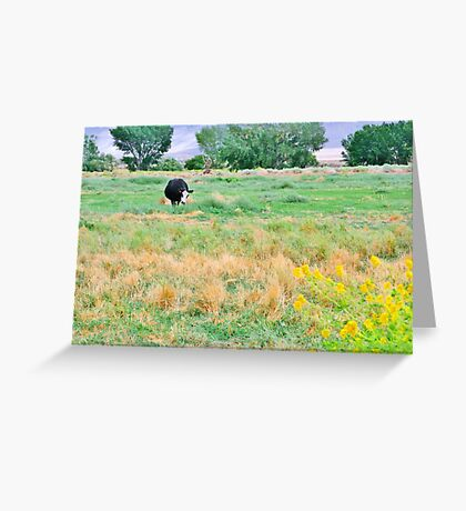 Going To Smell The Flowers Greeting Card