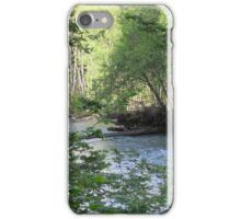 Beautiful nature scene in Olympic National Forest iPhone Case/Skin