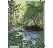 Beautiful nature scene in Olympic National Forest iPad Case/Skin