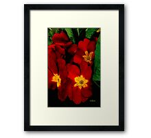 Bright Red Crescendo Framed Print