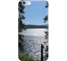 Ruby Beach in Washington iPhone Case/Skin