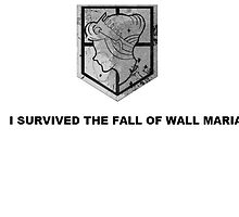 I Survived the Fall of Wall Maria by whatsername2014