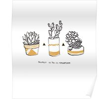 Rude Succulents Poster