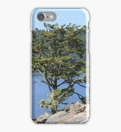 La Push Beach with interesting tree iPhone Case/Skin