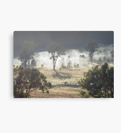 Australian Landscape - Morning Fog Canvas Print