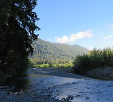Pacific Northwest River and Mountain by jkmarshall