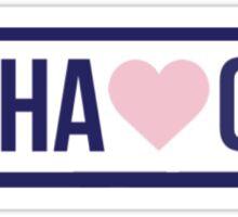 Brandy Melville Alpha Gamma Delta Sticker