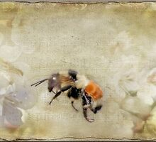 Dance Of The Bumble Bees by Crista Cowan