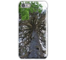 Tree in Hoh Rain Forest iPhone Case/Skin