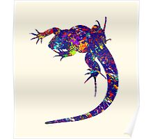 Colourful Lizard 2 Poster