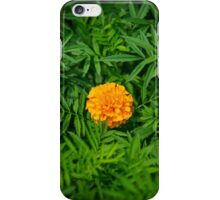 Orange flower.  iPhone Case/Skin