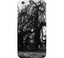 Decrepit iPhone Case/Skin