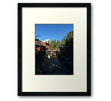 Grizzly water Framed Print