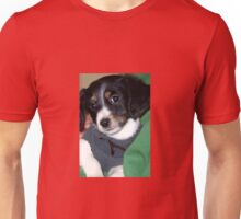 All You Need Is A Orb Hunting Dog Unisex T-Shirt
