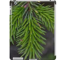 Pine Evergreen Fresh Branch  iPad Case/Skin