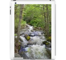 Lithia Park, Ashland, Oregon Creek  iPad Case/Skin