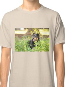 Playful Dog Classic T-Shirt