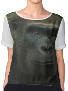 Gorilla Portrait - Melbourne Zoo Women's Chiffon Top