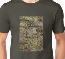 Lichens on bricks  Unisex T-Shirt