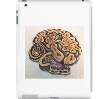 Ball Python iPad Case/Skin