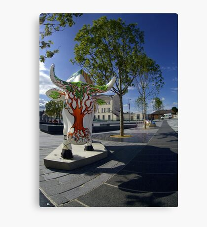 Cows and Trees, Ebrington Square, Derry Canvas Print
