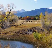 Autumn Ranch by Gary Benson