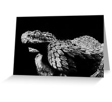 Snake Greeting Card